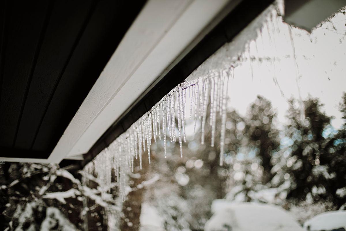Icicles on Vashon