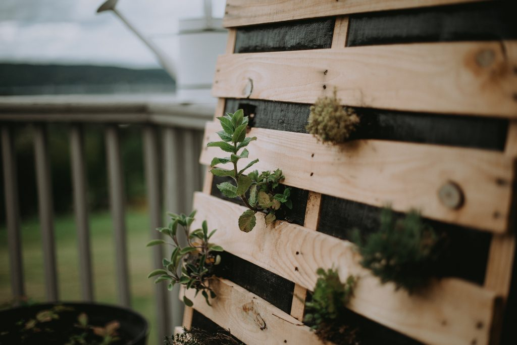 Herbs grow through the gaps of a hanging herb pallet planter.